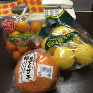 果物たくさん