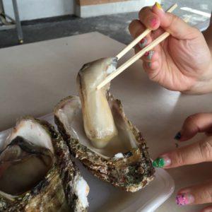 宮津の岩牡蠣