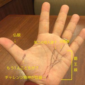 左手の手相