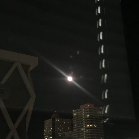 静岡のお月さま