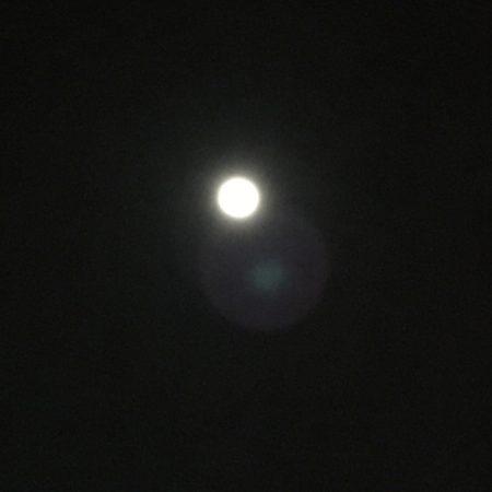 清水港の月