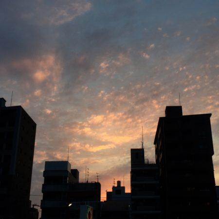 夕焼け空に浮かぶ龍神と黒翼狼と