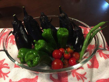 幼稚園で育てた野菜を採ってきました